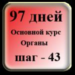 Шаг 43. Комплекс для желудка и селезенки