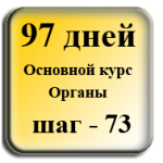 Шаг 73. Сухожилия коленного сустава